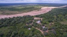 Emergencia forestal